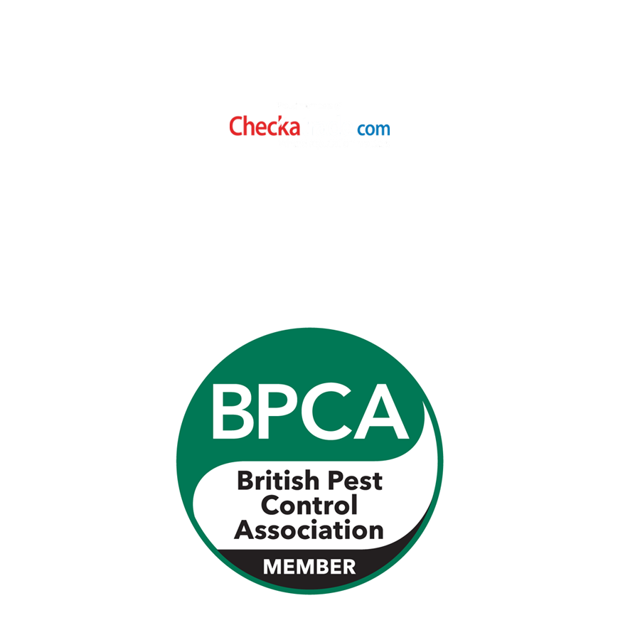 Residential pest control by SWAT Pest Control Ltd.